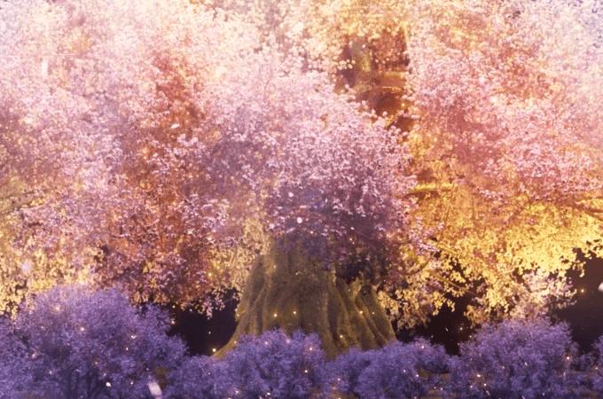 トライエコーズ 桜